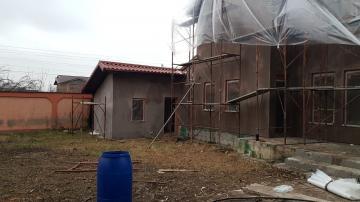 Amenjare interioara si exterioara casa Magurele